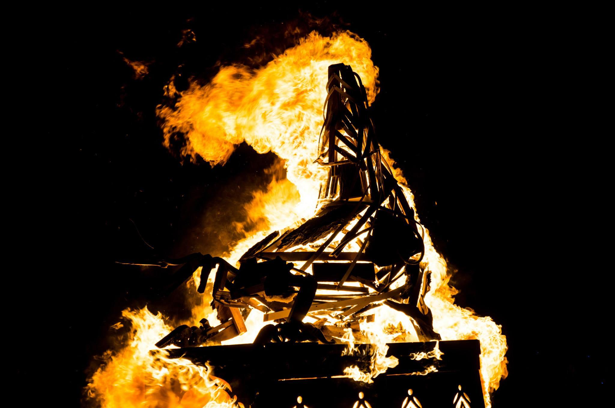 Lobo Madre - Burning Man 2013 Photo